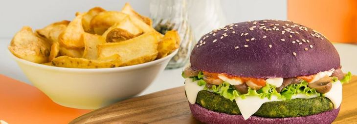 vita burger