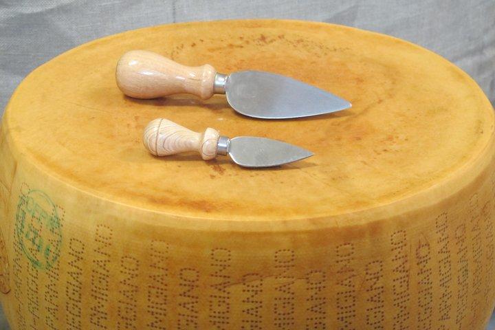 Parmigiano forma intera