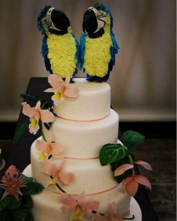 fatima lucchese venezuela's cake