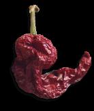 peperone senise essiccato